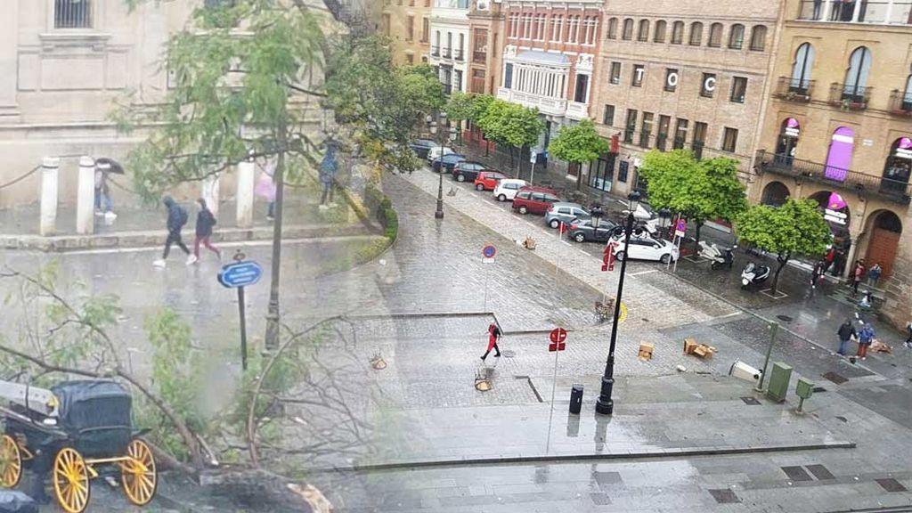 Lo que arrasó en Sevilla fue un tornado, sino un gustnado: cuál es la diferencia