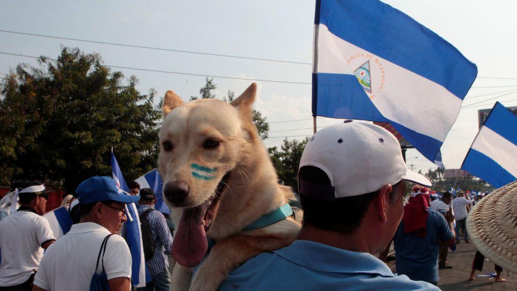 Siguen las protestas en Nicaragua