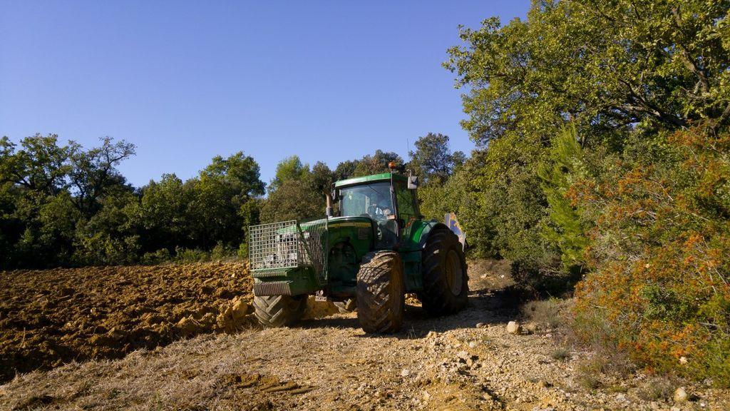 Seis meses de cárcel para un agricultor gallego por pegar y obligar a trabajar a su hija de 12 años