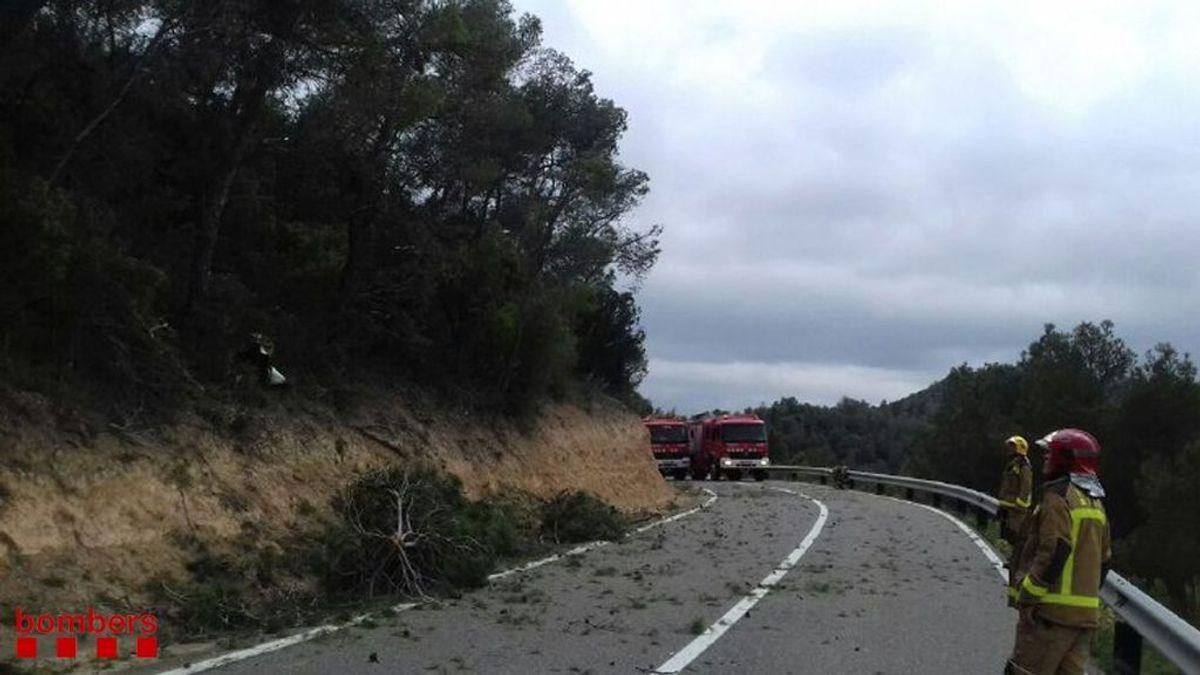 Fallecen tres personas en un accidente de avioneta entre Vinebre y Flix (Tarragona)