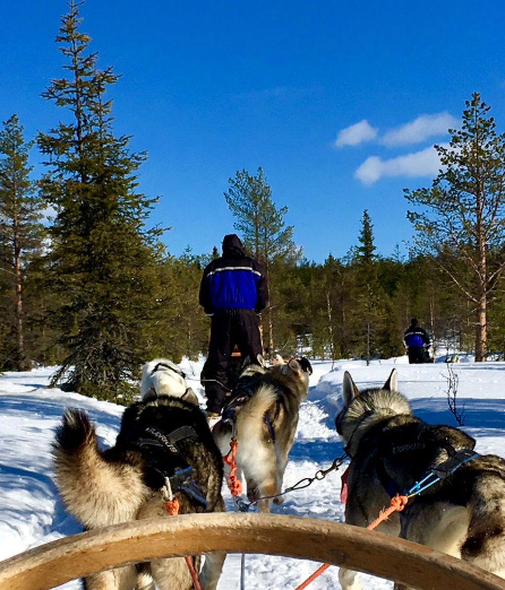 6 actividades para no perderse en Laponia Finlandesa