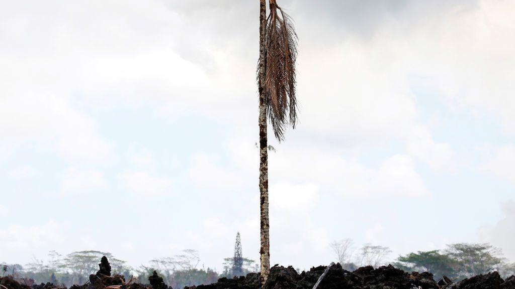 Devastadoras consecuencias de la erupción del volcán Kilauea