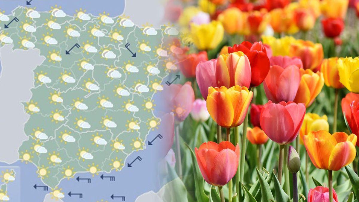 La primavera nos sigue despistando: te contamos qué tiempo hará las próximas semanas