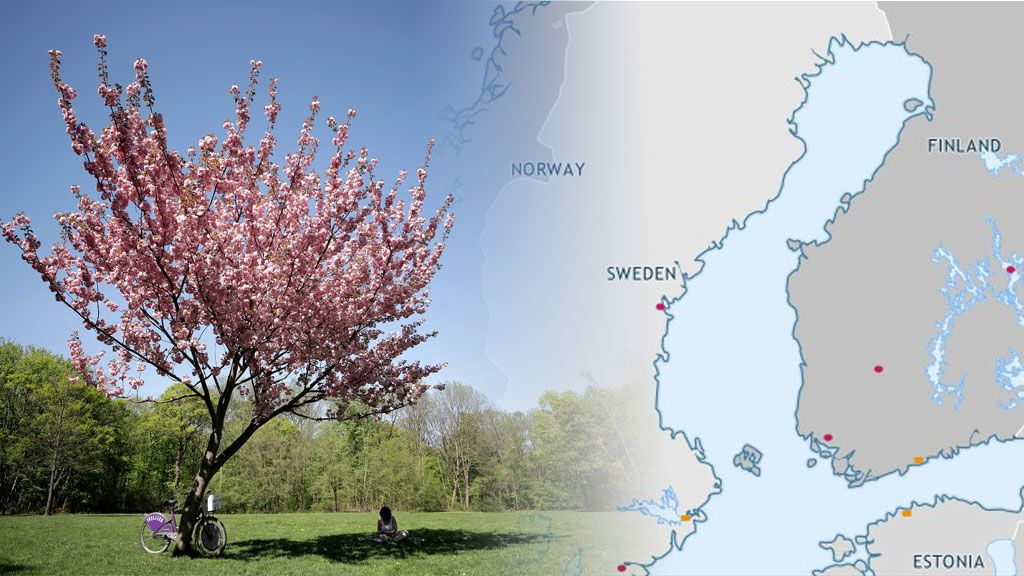 Suecia Finlandia