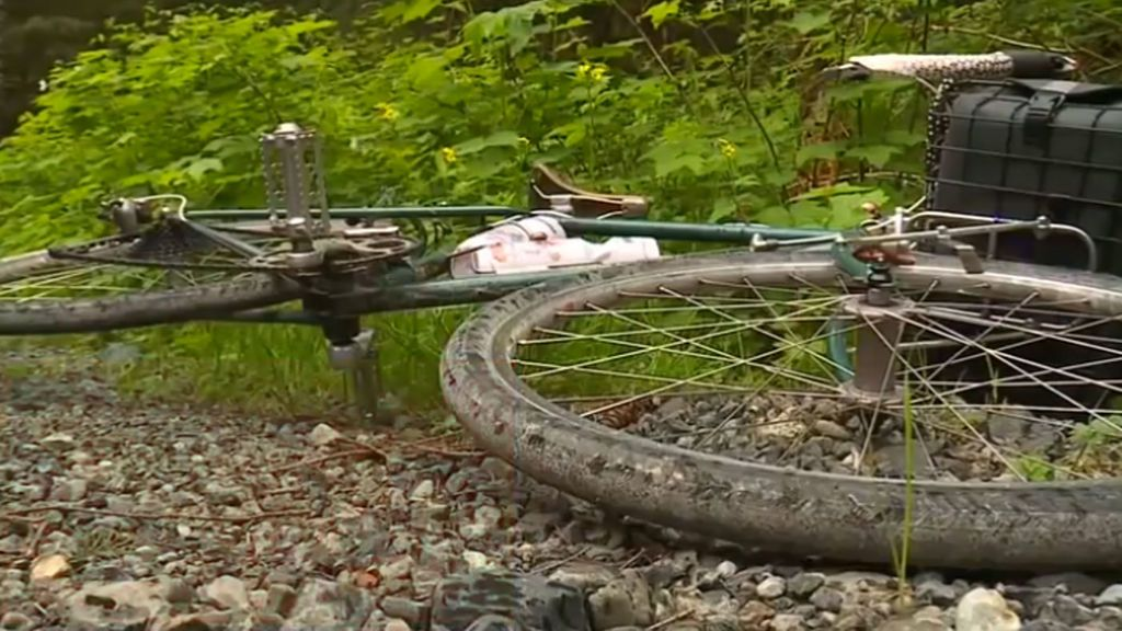 Un puma mata a un ciclista en una zona montañosa de Washington