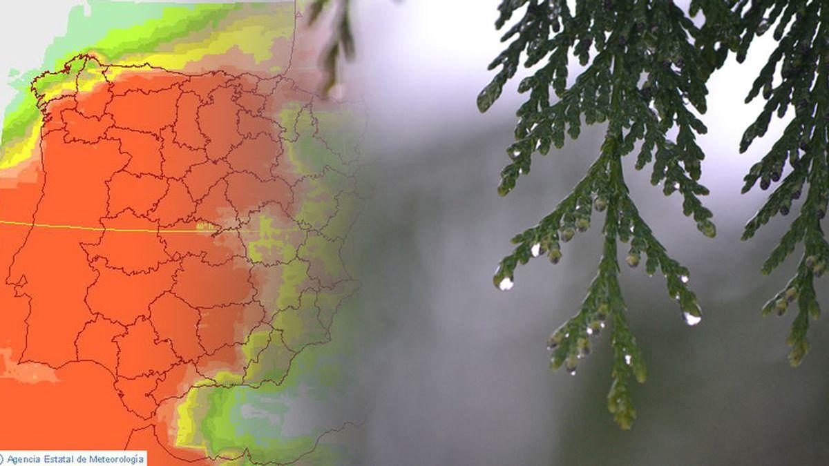Saca el paraguas: por lo menos tendremos 7 días de lluvias