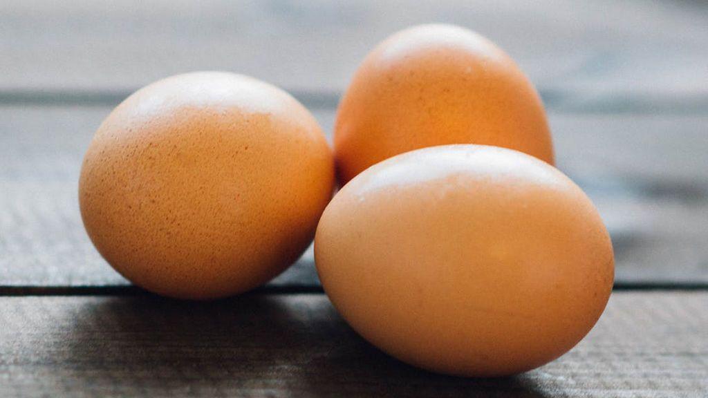 Comer un huevo al día puede reducir el riesgo de sufrir enfermedades cardiovasculares