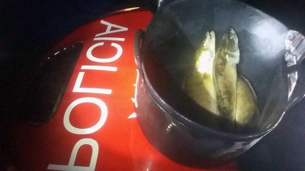 Detenidos por pescar furtivamente en el embalse de Valmayor para su restaurante chino