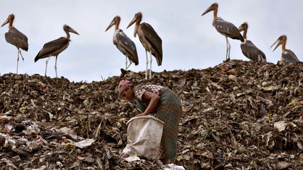 Recolección de artículos reciclables en India