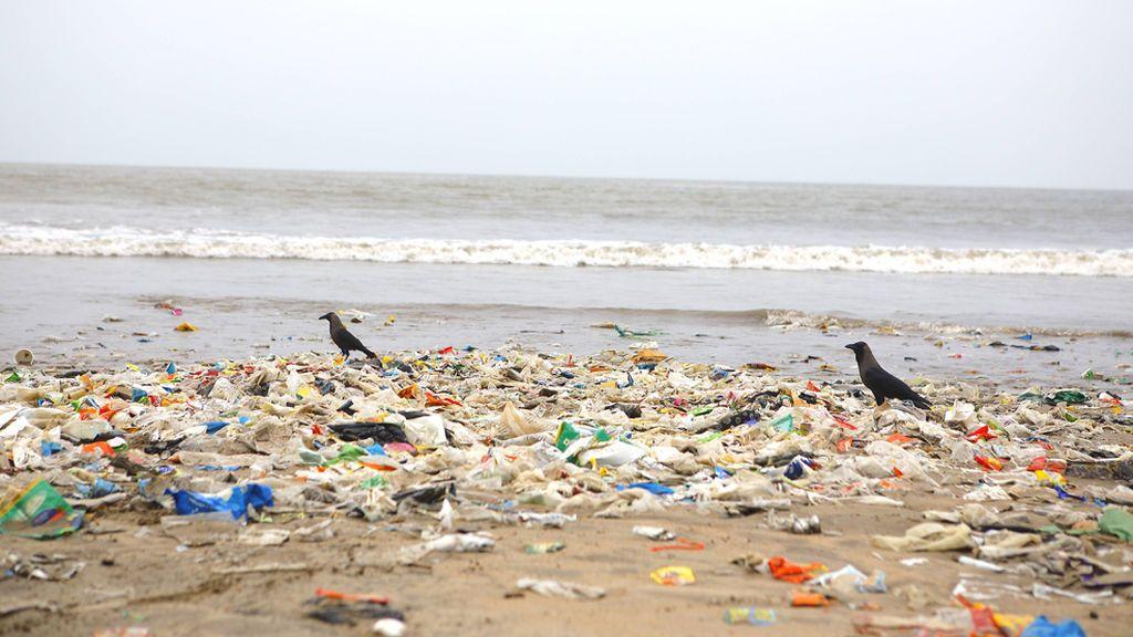"""El Día Mundial del Medio Ambiente, contra el plástico: """"Si no puedes reusarlo, rehúsalo"""""""