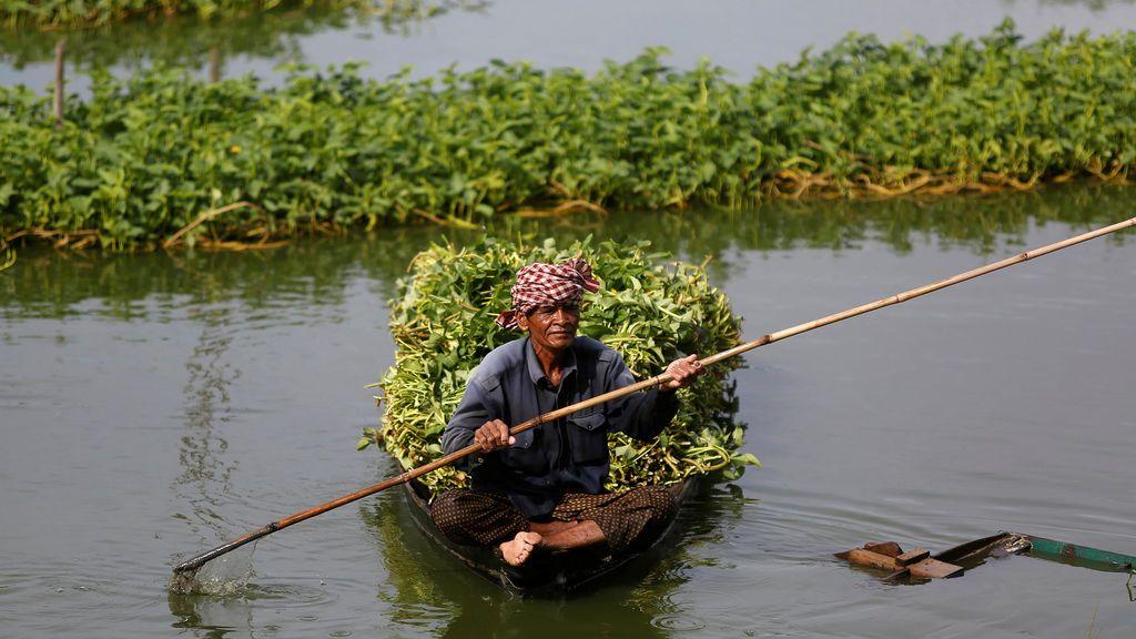 Imagen cotidiana en Camboya