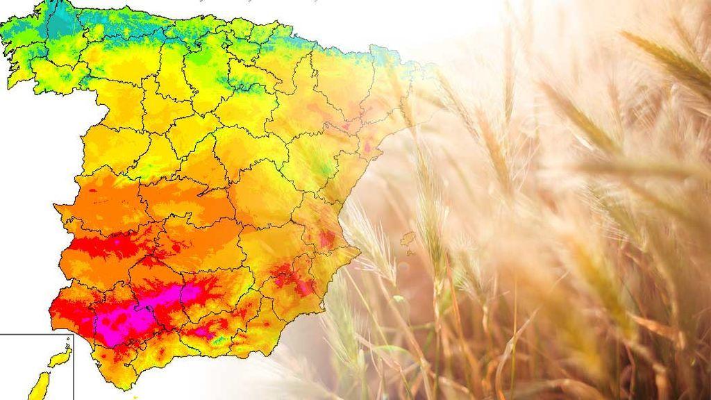 Verano, ven a mí: a partir del viernes, 30ºC en casi todo el país