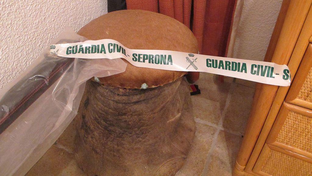En una vivienda de Tenerife utilizaban una pata de elefante como taburete