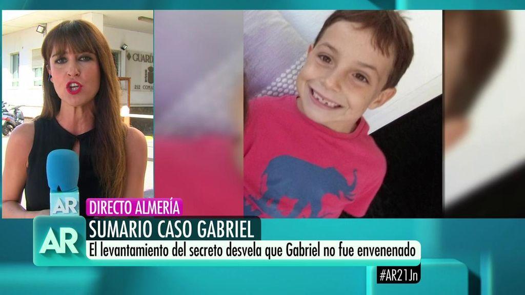 Sumario Gabriel