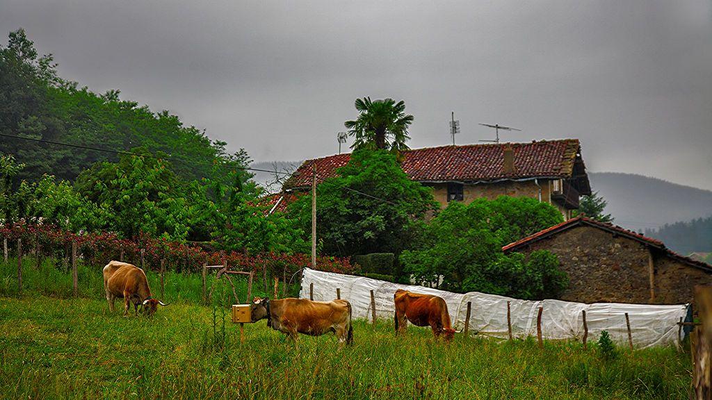Imanol Aragón en Amorebieta-Echano, Vizcaya