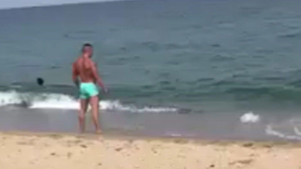 Twitter ríe con la 'entrada al mar' más divertida del año