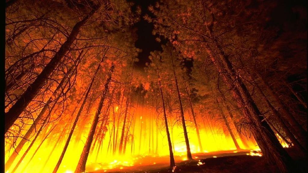 El riesgo de incendios mundial puede predecirse gracias a un nuevo modelo de la NASA