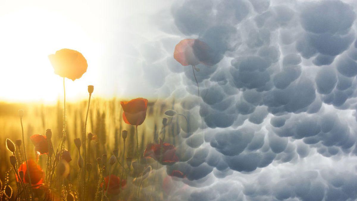 Calor y tormentas: el tiempo que te espera el fin de semana, día por día