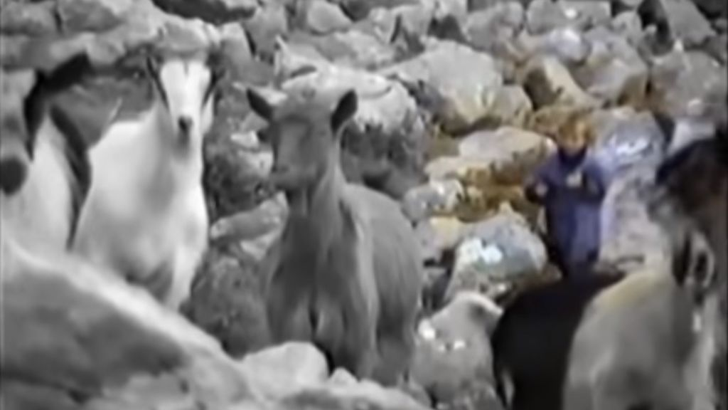 Sale a la luz el vídeo de Modric pastoreando en la montaña con tan solo 5 años