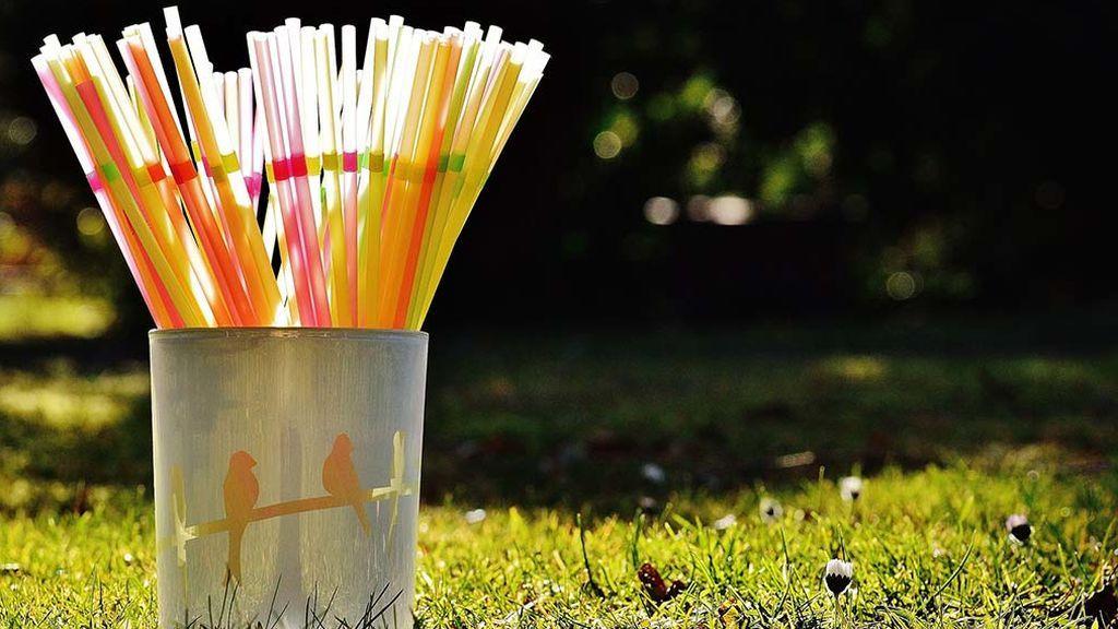 Pajitas comestibles para combatir la contaminación por los plásticos