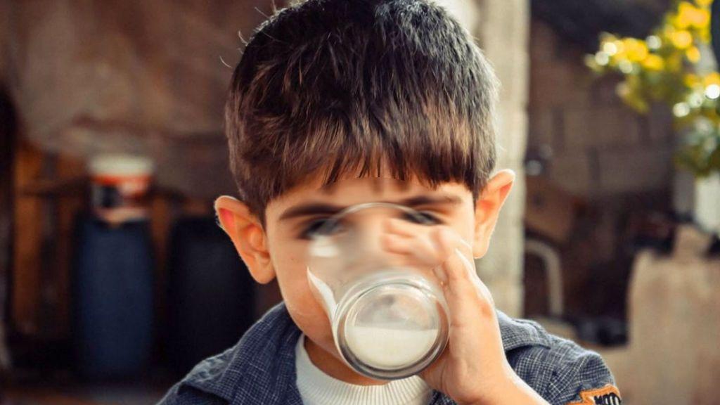 La leche cruda llega a los dispensadores en España:   qué es y cuánto conviene beberla