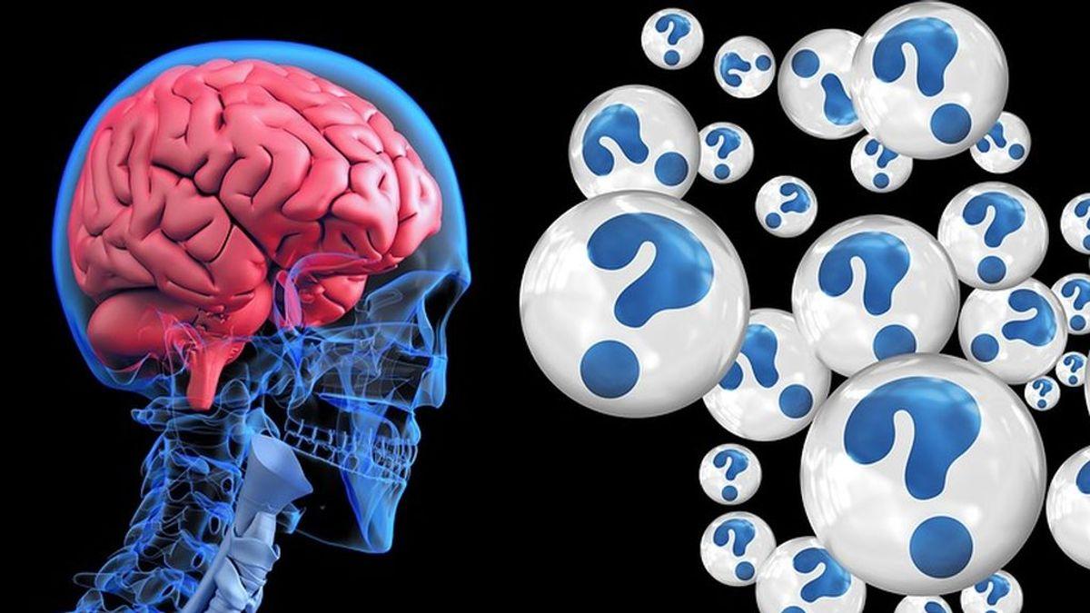 Presentan el primer fármaco que avanza positivamente en el tratamiento del alzhéimer