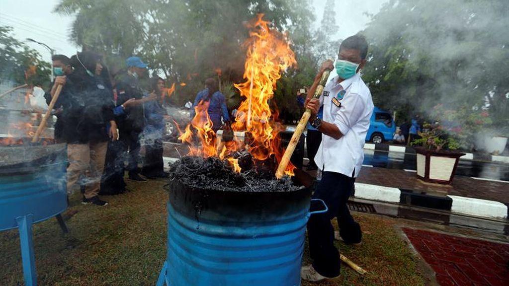 Destrucción de drogas en Indonesia