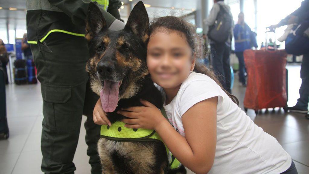 Sombra, la perra policía que un clan de la droga colombiano ha amenazado de muerte