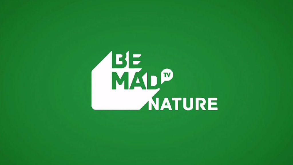 Saca tu lado más animal con BeMad Nature