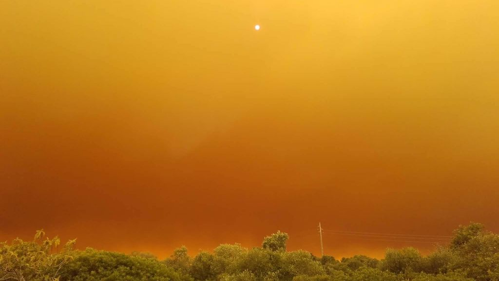 Cielos y bosques grises en Portugal: el fuego sin controla ha calcinado más de 15.000 hectáreas
