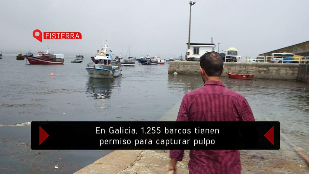 'El verano en el punto de mira' investiga el incremento del turismo en Galicia, el lunes 13 de agosto (22.45) en Cuatro.