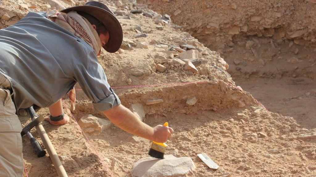 El Homo erectus se extinguió por causa de la pereza