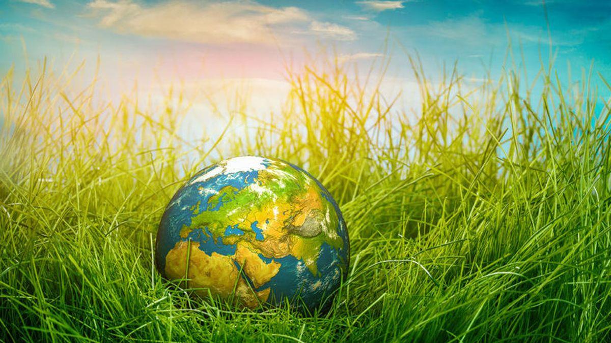 La rentabilidad que supone invertir en proyectos sostenibles y socialmente responsables