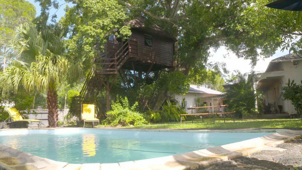 ¡En Mauricio puedes dormir en una casa -árbol en plena naturaleza!