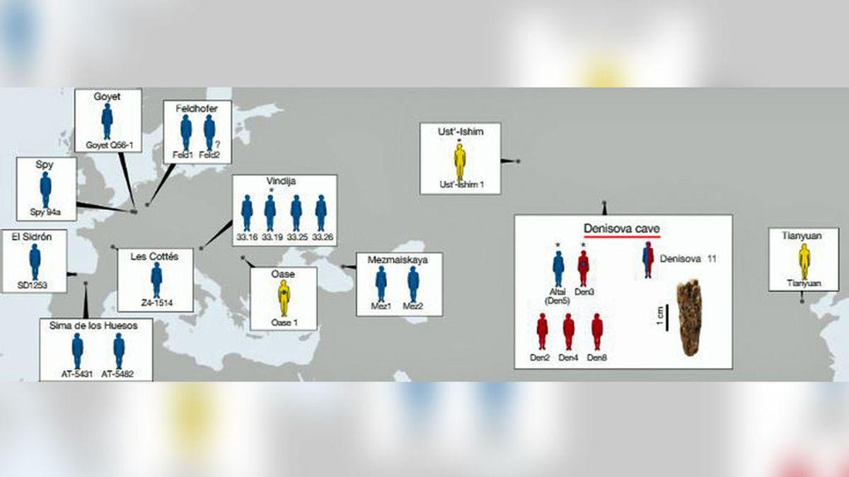 Hallado el primer ser humano fruto del sexo de dos especies diferentes: neandertal y denisovano