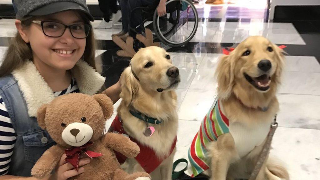 La compañía fiel de los perros a los niños enfermos en Texas enternece a los tuiteros