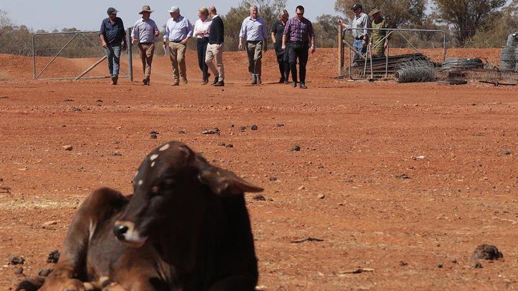 Morrison analiza la situación de sequía en Australia