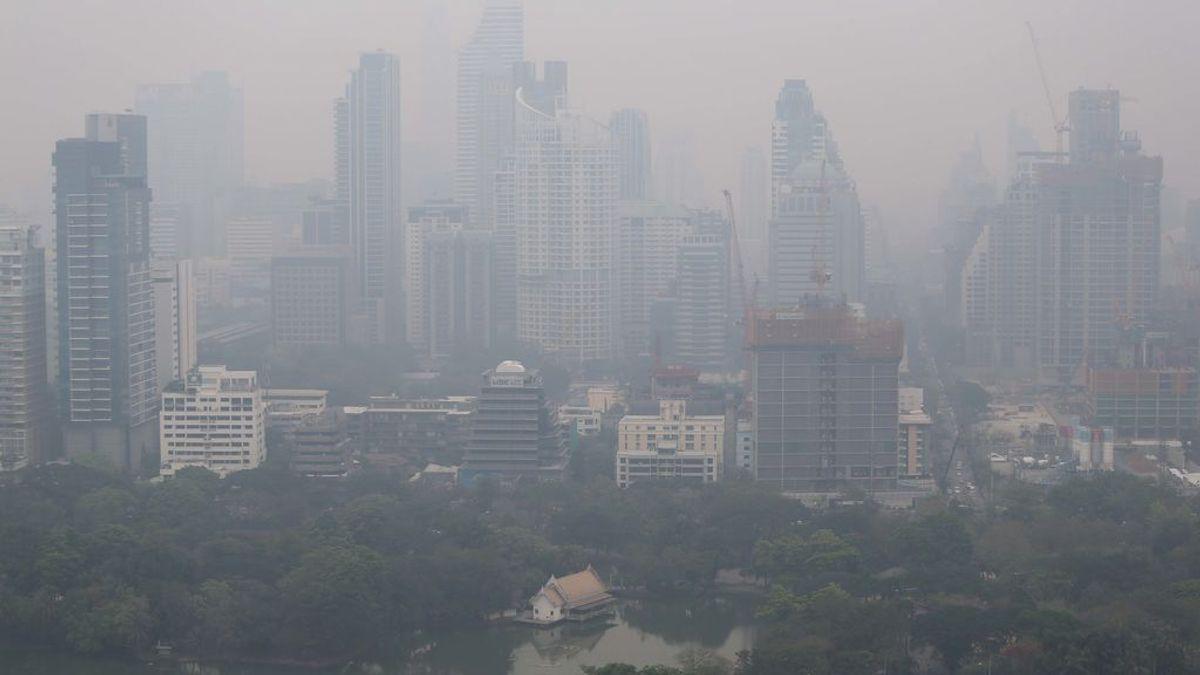 """Respirar aire contaminado causa una """"enorme"""" reducción en la inteligencia"""