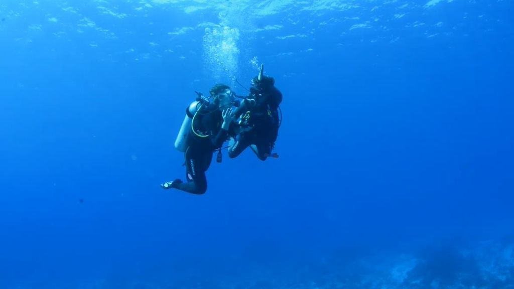 El segundo arrecife de corales más grande del mundo: ¡conoce sus secretos!
