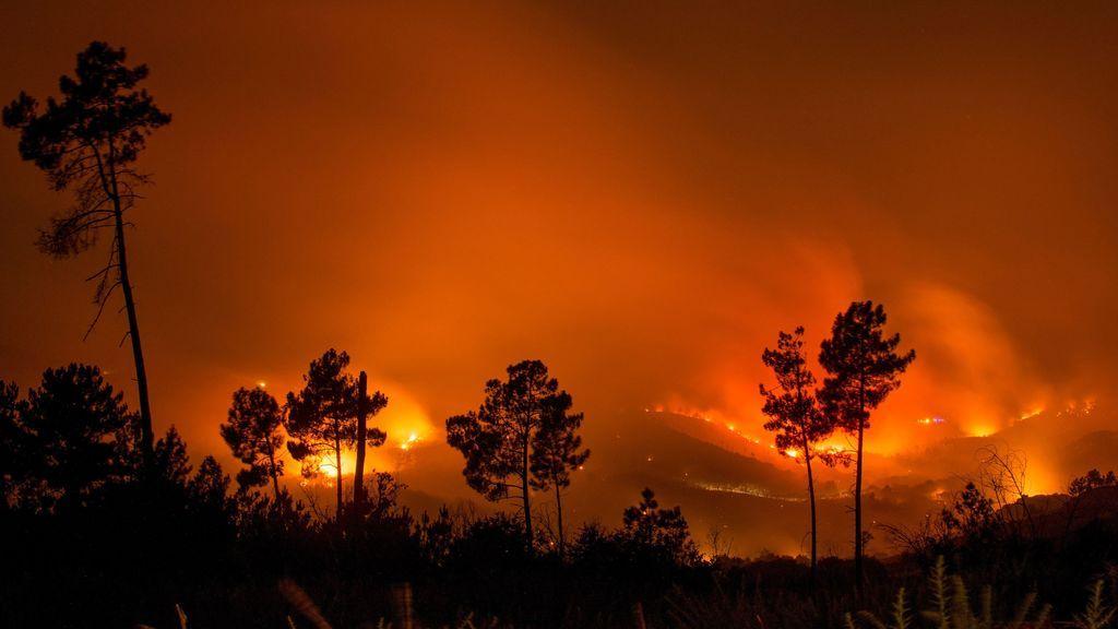 Las llamas avanzan en un incendio forestal que ha calcinado ya 50 hectáreas en Ourense
