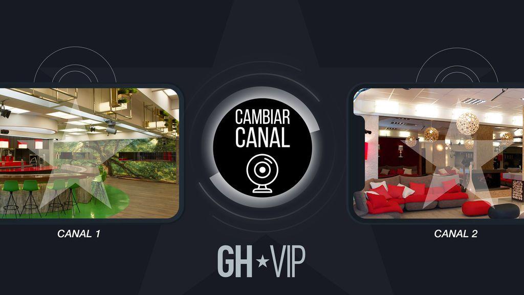 ¡La multicámara llega a 'GH VIP'! Dos señales distintas en directo durante 24 horas