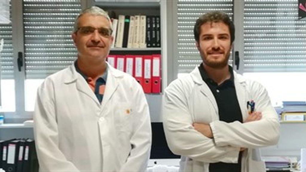 Científicos españoles descubren que un gen pretumoral puede convertirse en agente antitumoral según su localización