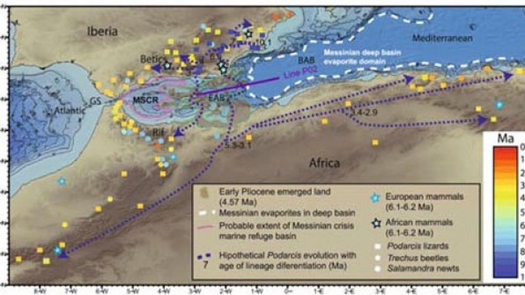 Descubren un archipiélago volcánico sumergido en el Mar de Alborán
