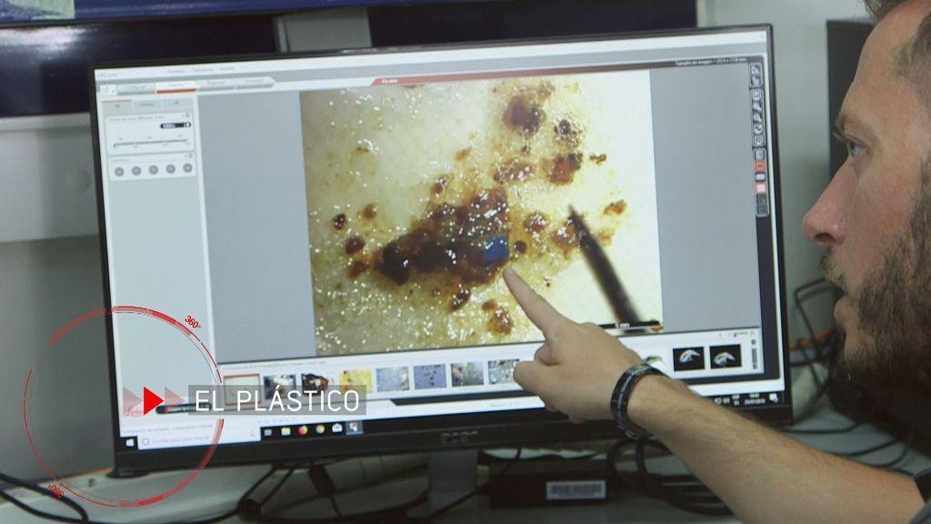 La España 'plastificada', 'En el punto de mira'.