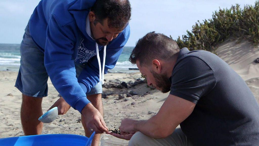 El micoplástico: Un material que podría acabar con la vida en el planeta