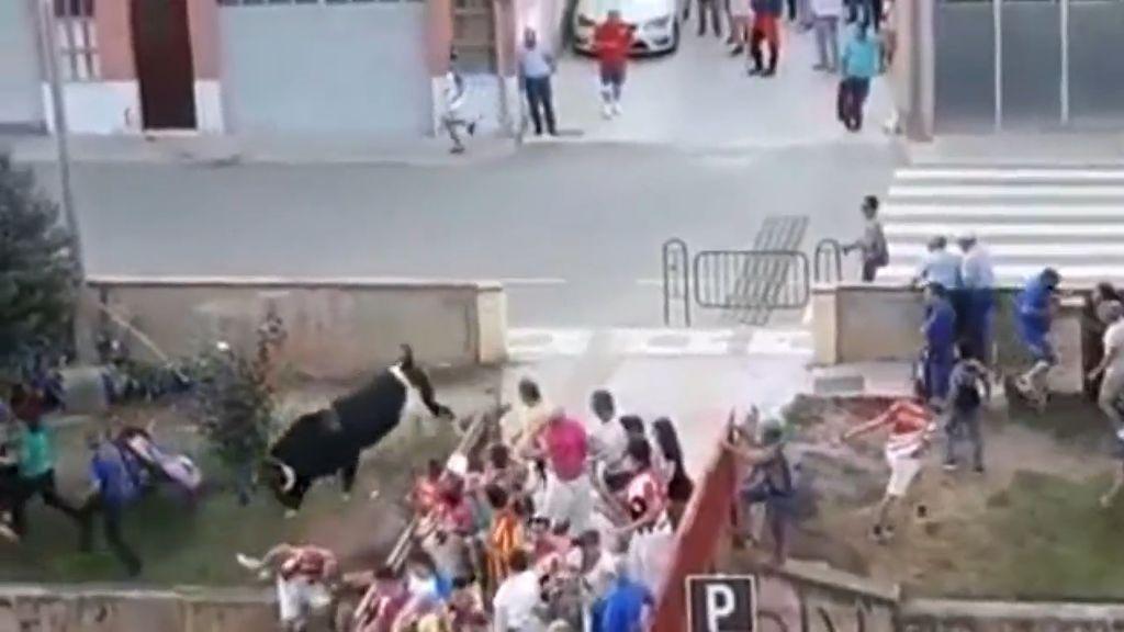 Dos heridos por un toro que se sale de su recorrido en Alcorisa, Teruel