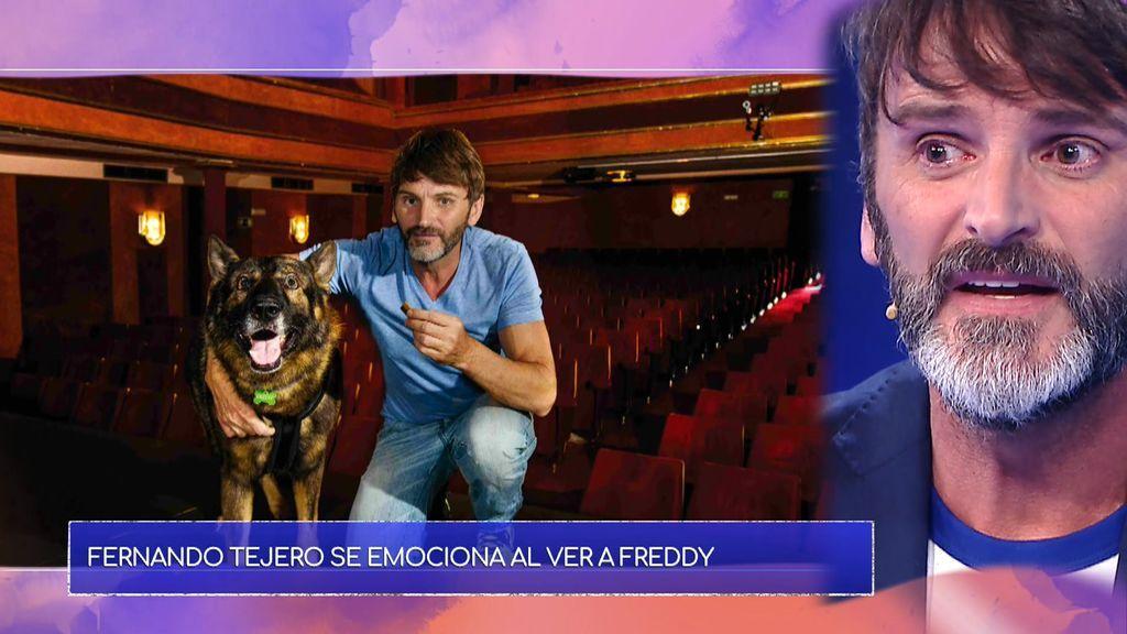 Amor perruno: Fernando Tejero se reencuentra con Fredy, el perro que cambió la vida de Maite y José