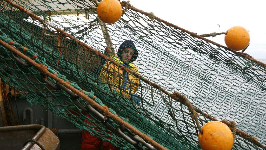 Más de un centenar de científicos exigen que el fin de la sobrepesca en el Mediterráneo