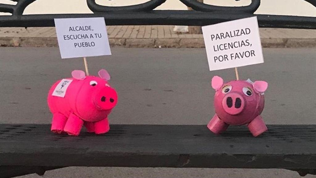 2 000 cerditos en contra de las macrogranjas en Cuenca