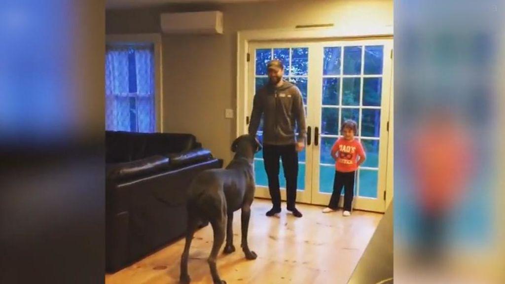 Un perro de EEUU imita a su dueño y repite sus mismos ejercicios